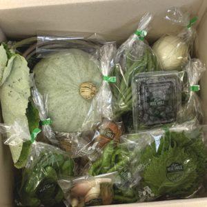野菜セット例1
